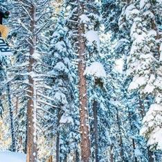 Uno Snowboard Camp della Madonna!